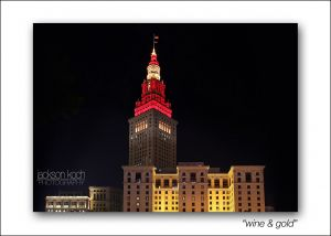 cleveland skyline wine and gold.jpg