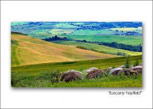 tuscany hayfield