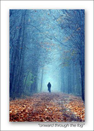 onward-through-the-fog